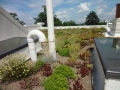 DC building of Green Roof