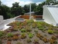 DC installation of Green Roof Solar Roof deck